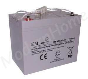 NPG 12V 100Ah Gel Battery